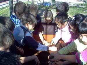 Curso El huerto ecológico como recurso educativo [3 Edición] / germinando